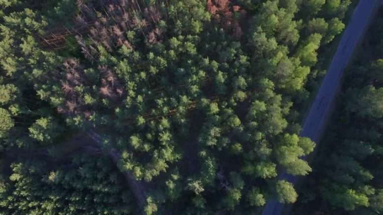 Video Drone Service Ontario